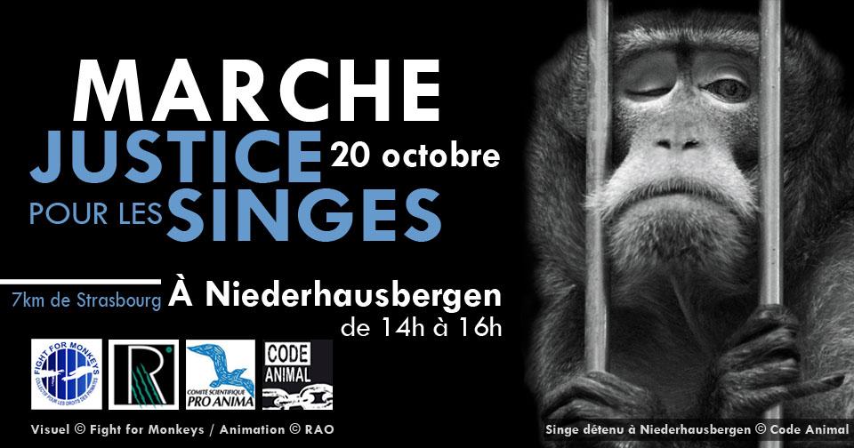Marche Justice pour les singes du 20 Octobre à Niederhausbergen