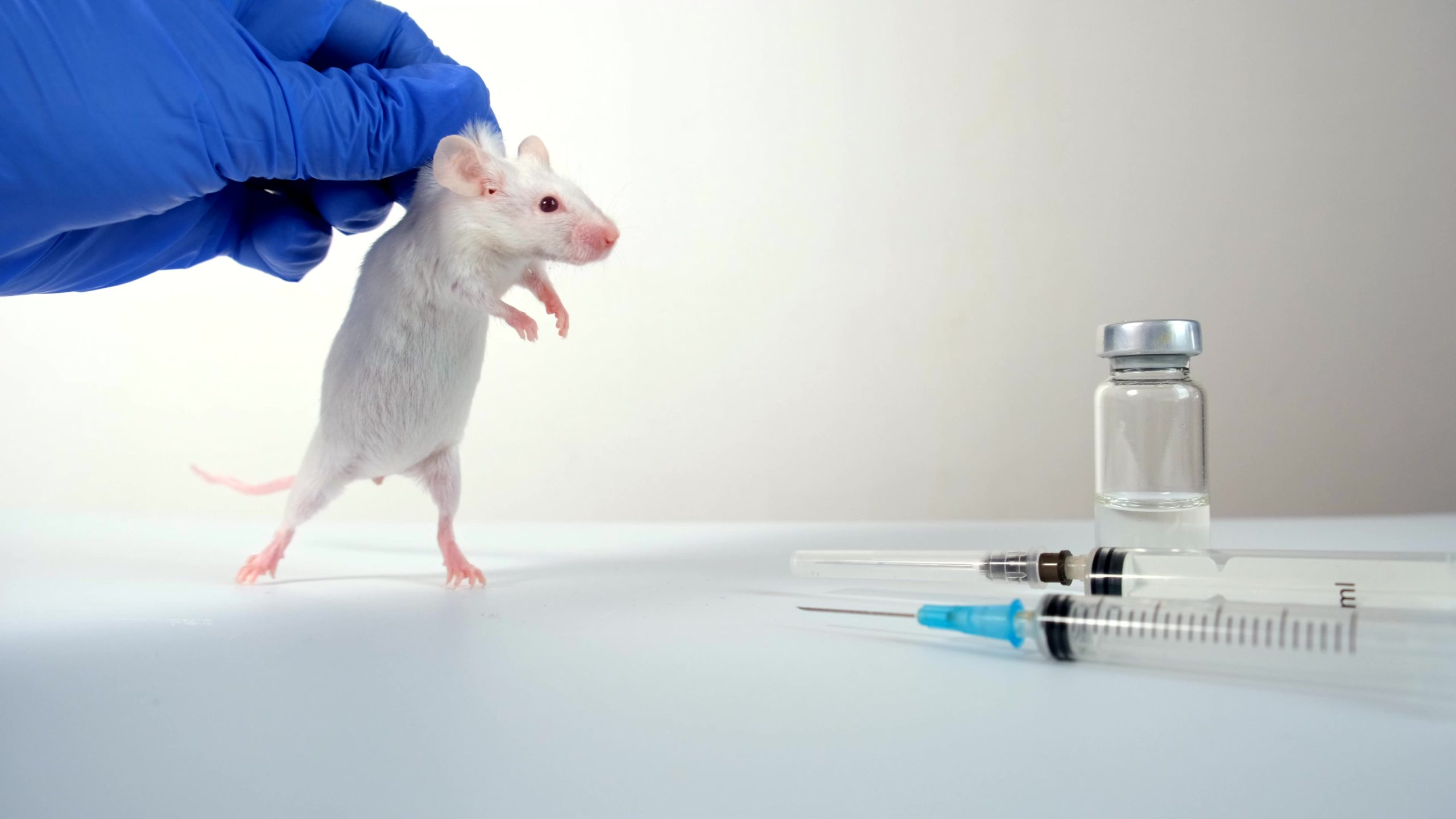 Cruel botox tests on mice continue despite animal-free tests have been available for 10years